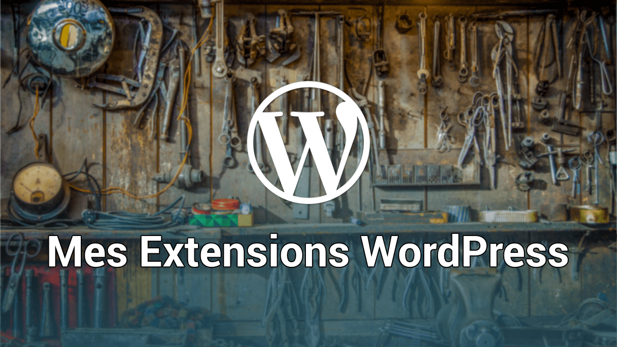 MES EXTENSIONS WORDPRESS