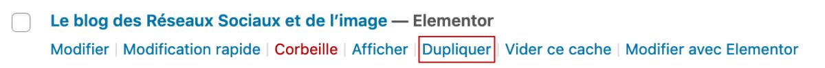 Option Dupliquer de Duplicate Page