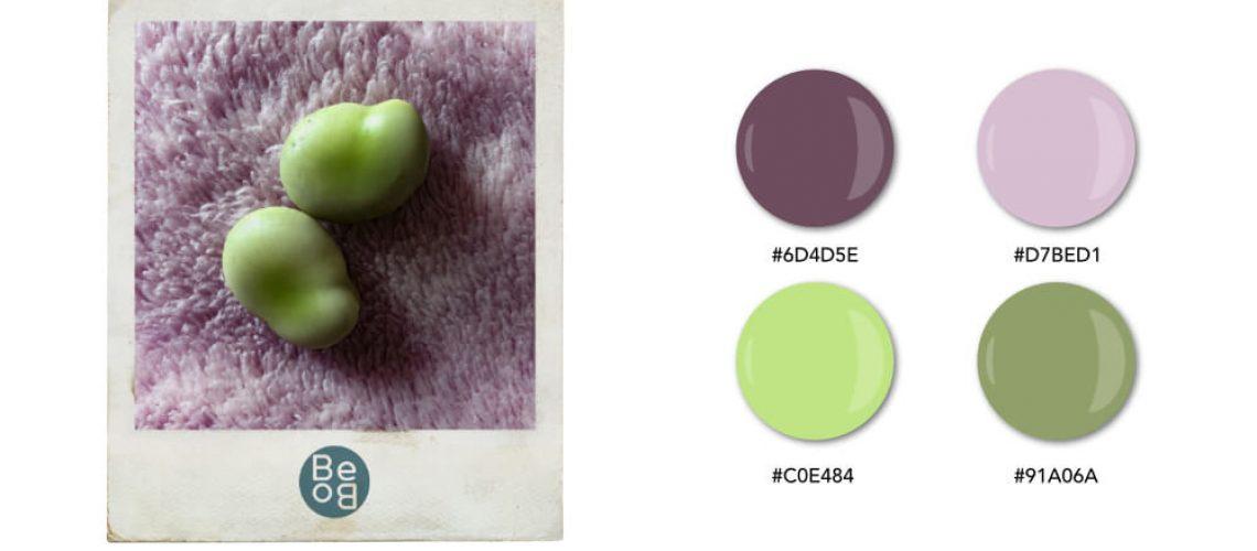 nuancier aux couleurs tendres inspiré d'un plaid et de deux fèves